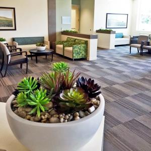 Replica-Bowls-for-Health-Care-Facility-N