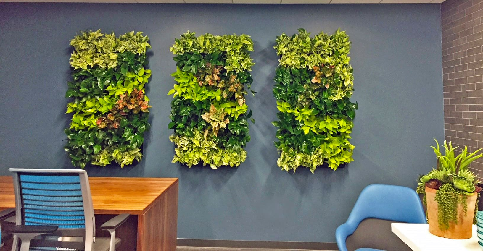 Indoor environments become healthier with the presence of plants in containers and hanging on walls as living art..